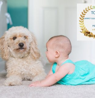 Top 3 Carpet Cleaning Perth