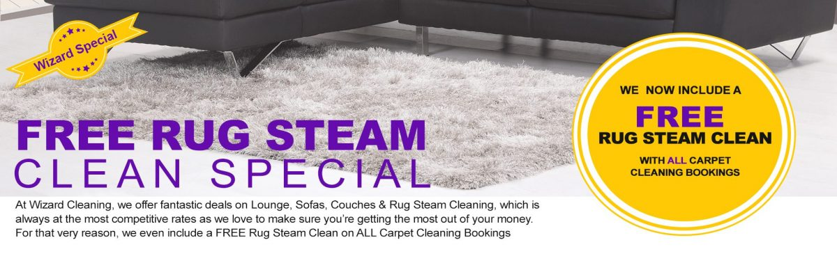 Carpet steam clean banner LR